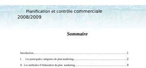 Planification et contrôle commerciale