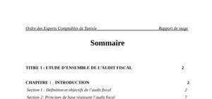 L'Audit fiscal : programme de travail