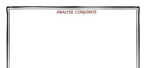 Analyse conjointe Projet RPE