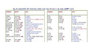 Substantifs féminins intervenant en 4ème LV1