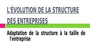 L'évolution de la structure des entreprises