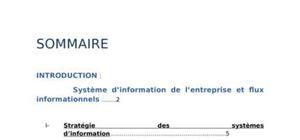 Les systèmes d'information de l'entreprise