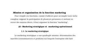 Mission et organisation de la fonction marketing