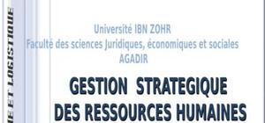 Management des ressources humaines et performance des organisations