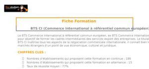 BTS CI (Commerce International)