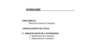 Rapport de stage (Organisation d'une entreprise)