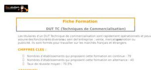 DUT TC (Techniques de Commercialisation)