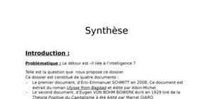 Synthèse - Le détour est–il lié à l'intelligence ?