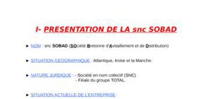 Rapport De Stage Bac 2 Secteur Transport