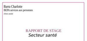 Rapport De Stage Bep Sanitaire Et Social