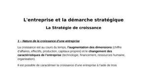 L'entreprise et la démarche stratégique
