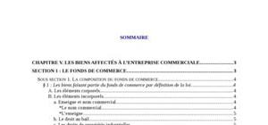 Le fonds de commerce