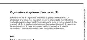 Organisations et systèmes d'information