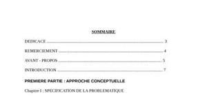 Audit interne : généralités, démarches et applications