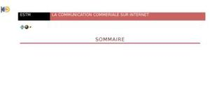 Communication commerciale sur internet