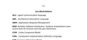 Etude d'un système autonome cas de serveur frontière