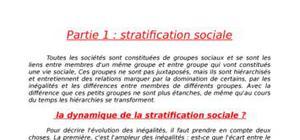 Inadaptations sociales