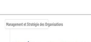 Contrôle et audit stratégiques