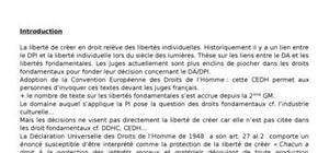Droit de la propriété intellectuelle + droit des libertés fondamentales