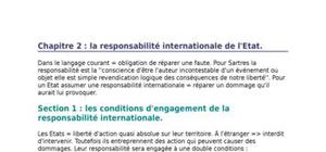 La responsabilité internationale de l'etat.
