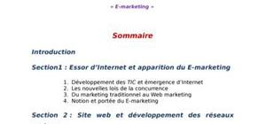 Exposé sur le e-marketing