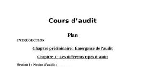 Cours d'audit financier