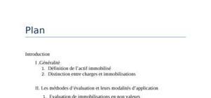 Audit des immobilisation doc