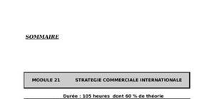 Stratégie commerciale international