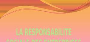 La responsabilite sociale des entreprises«rse»