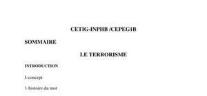 Le terrorisme et ses impacts