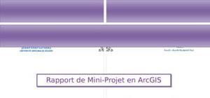 Rapport de mini-projet en arcgis engine