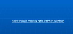 Element de module: commercialisation de produits touristiques