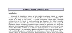 """Candide chapitre 1 """"l'incipit"""""""