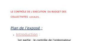 Le controle de l'execution du budget locale