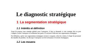 Diagnostique strategique en marketing