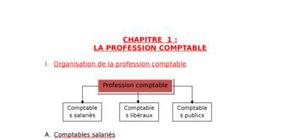 La profession comptable