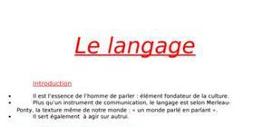 Expose sur le langage en philo