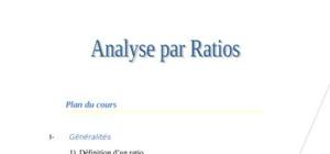 Analyse des ratios.