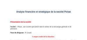 Analyse financière et stratégique de la société poisat