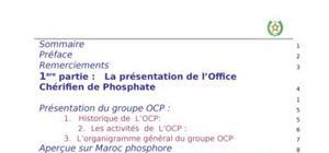 La décentralisation cas ocp maroc