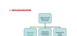 Soutenance rapport de stage (soutenance rapport de stage )