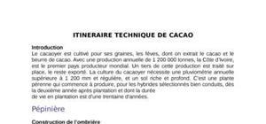Itinéraire technique du cacao