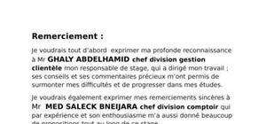 Rapport de stage sur société mauritanienne des postes