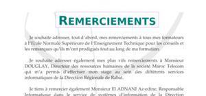 Rapport De Stage De Fin De Cycle Sur Le Paludisme