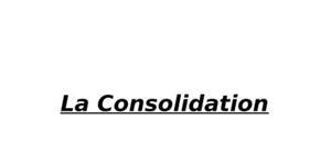 Cours de gestion sur la consolidation d'entreprises