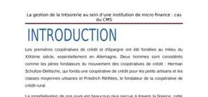 La gestion de la tresorerie au sein  d'une institution de microfinance  e