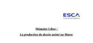 Mémoire libre sur la production de dessins animés
