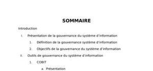 Gouvernance du systeme d'information