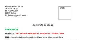 Cv modèle domaine logistique