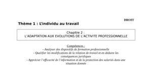 L'adaptation aux évolutions de l'activité professionnelle